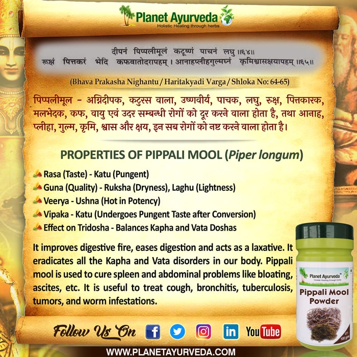 Classical Reference of Pippali Mool