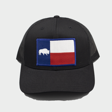 Load image into Gallery viewer, Last Stand Texas Flag /  Black & Black  / Curved Bill