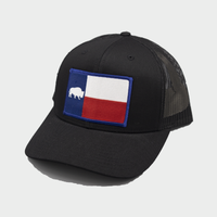 Last Stand Texas Flag /  Black & Black  / Curved Bill