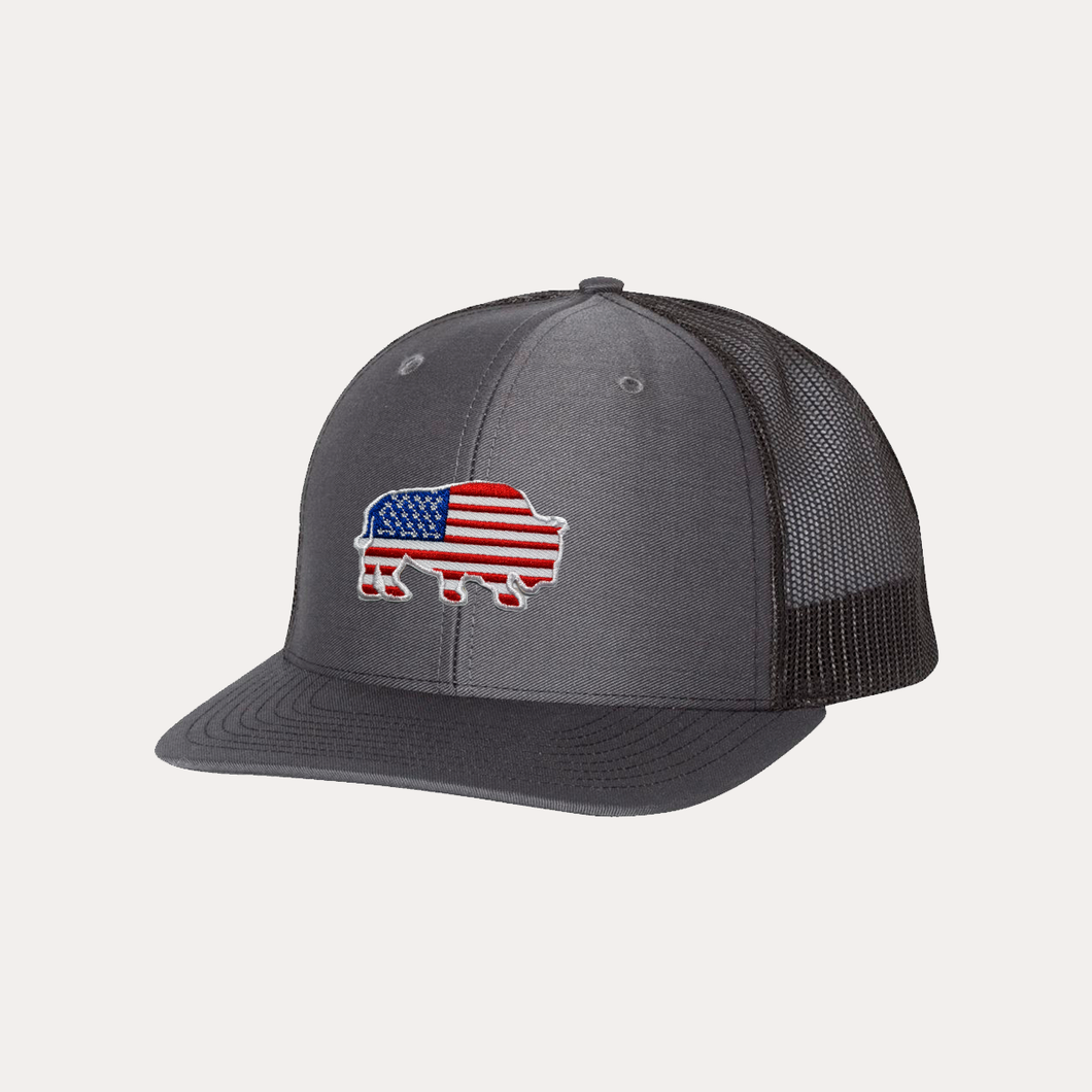 Last Stand Bison American Flag / Charcoal - Black / Curved Bill