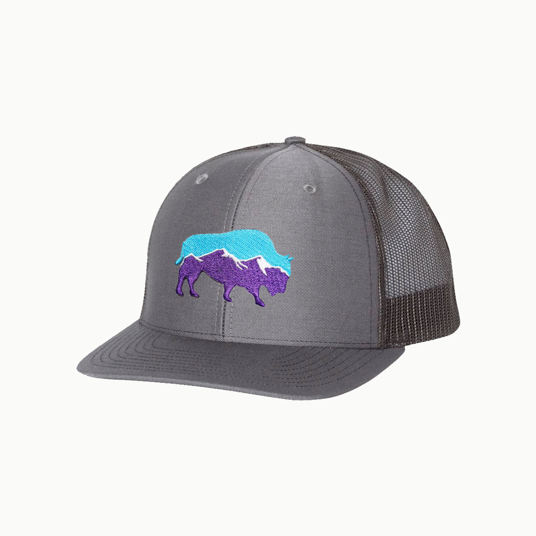 Last Stand Mountain Bison /  Charcoal - Black / Curved Bill