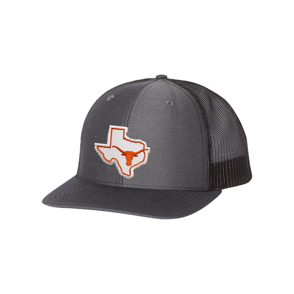 University of Texas / State of Texas Longhorn  / Curved Bill