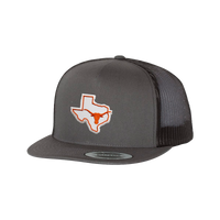 University of Texas / State of Texas Longhorn  / Flat Bill