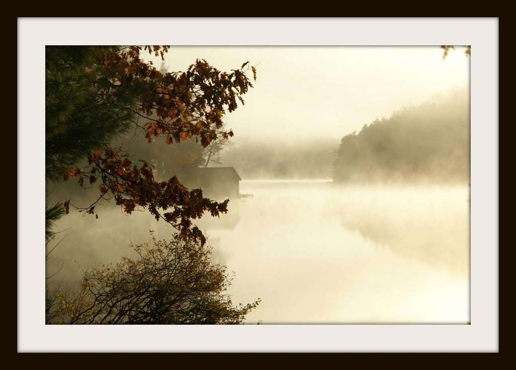 AUTUMN MORNING,  a Photograph by Ronnie Lebow