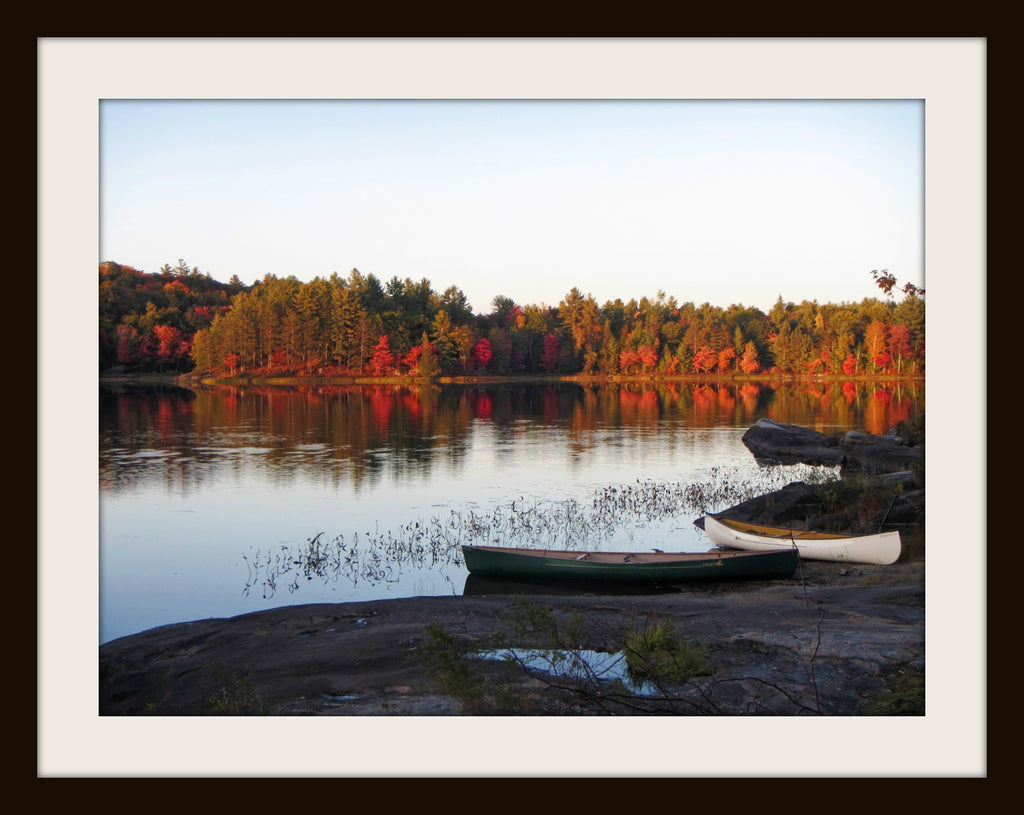AUTUMN TRIP,  a Photograph by Ronnie Lebow
