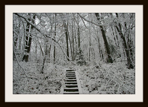 WINTER STAIRCASE, a Photograph by Ronnie Lebow