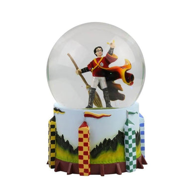 HARRY POTTER QUIDDITCH WATER BALL