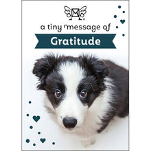 Load image into Gallery viewer, A TINY MESSAGE OF GRATITUDE DOG