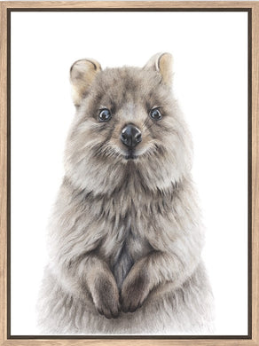 FRAMED CANVAS QUOKKA AUSTRALIAN ORIGINAL ARTIST
