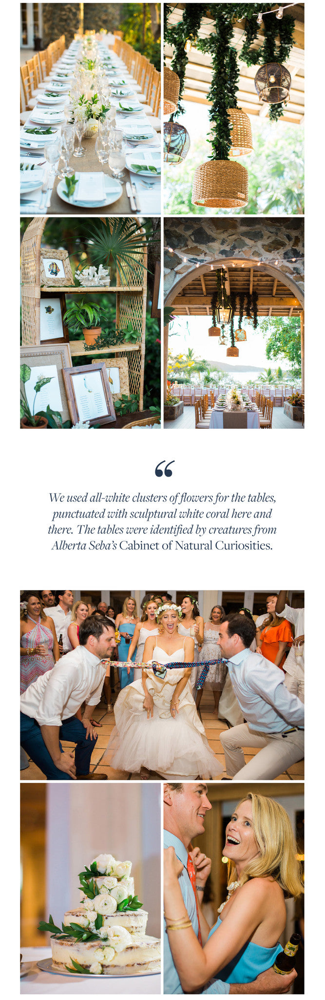 We used all-white clusters of flowers for the tables, punctuated with sculptural white coral here and there. The tables were identified by creatures from Alberta Seba's Cabinet of Natural Curiosities.