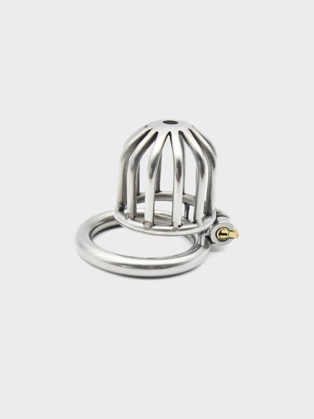 A metal chastity cages around 1.5 inches in length