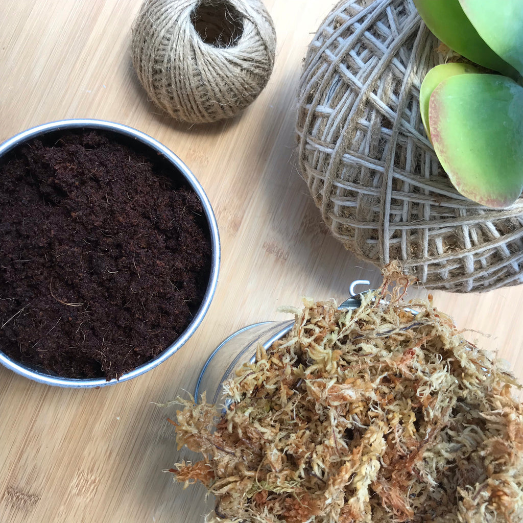 KOKEDAMA MAKING KIT