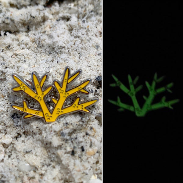 Glow Staghorn Coral Pin • donation item CRF
