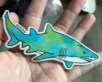 Sand tiger shark sticker