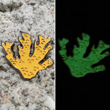 Glow Elkhorn Coral Pin • donation item CRF