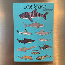 I Love Sharks Magnet