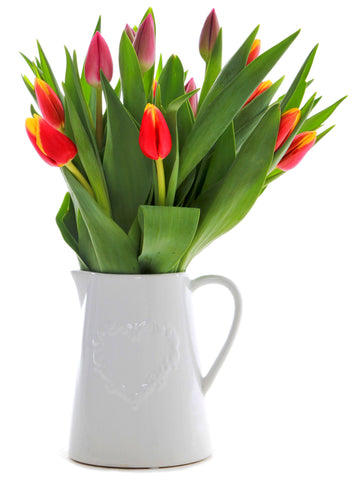 Mixed Tulip Jug