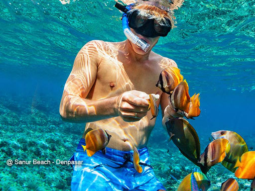 3h Bali Snorkeling Tours Incl. Hotel Transfer