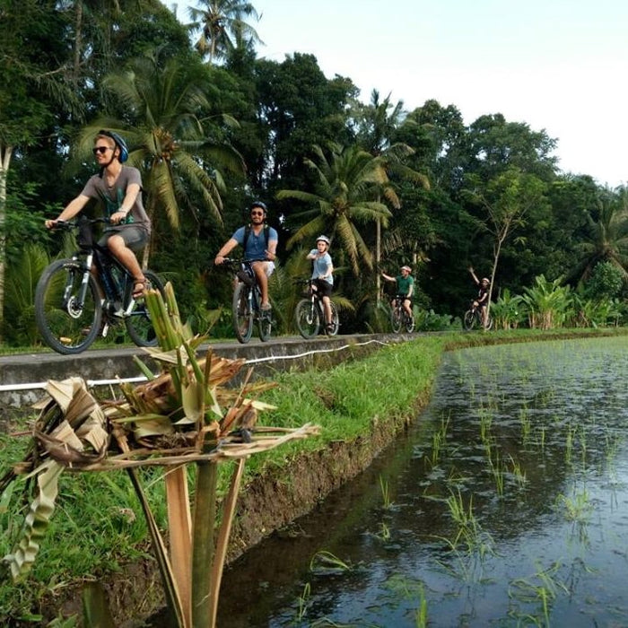 Half-Day Ubud Electric Bike Tour to Tirta Empul Water Temple