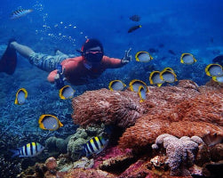 Snorkeling & Kayaking Adventure in Lembongan & Penida (D)