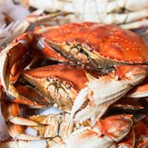 How To Clean A Whole Cooked Dungeness Crab