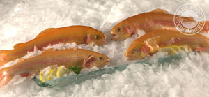 Fresh Whole Golden Trout
