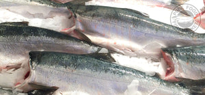 Fresh Whole Alaskan Sockeye Salmon - 5-6 lbs.