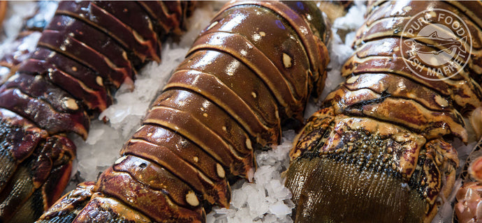 Super Jumbo Colossal Lobster Tails