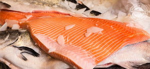 Fresh Silver Salmon Fillet