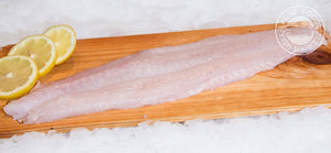 Fresh Ling Cod Fillets