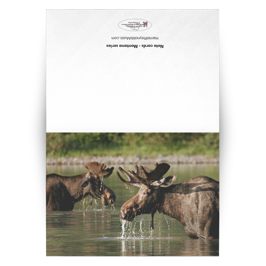 Folded Cards - Montana Series [Moose in River]