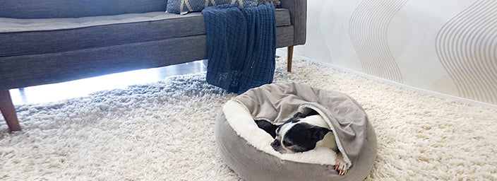 Calming Dog Beds: The Importance of a Designated Sleeping Area