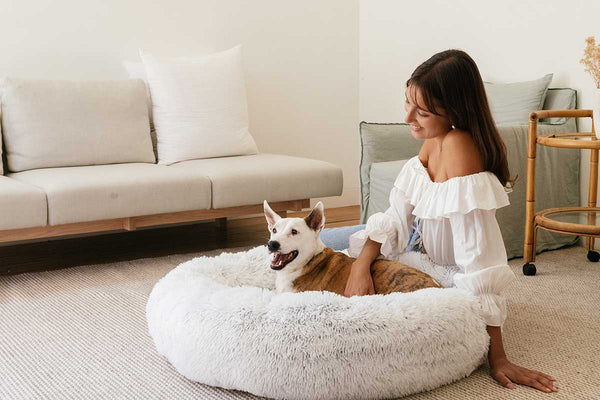 woman next to dog on a dog bed