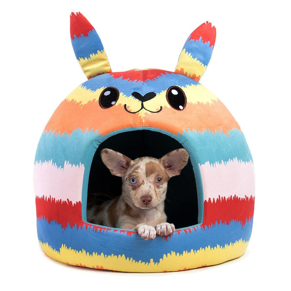 Piñata Novelty Pet Hut