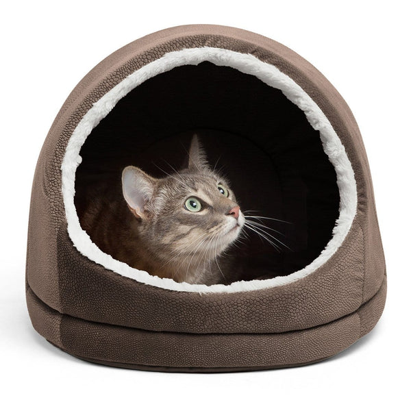 Kitty Cave Ilan
