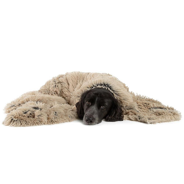 "Calming Pet Throw Blanket in Shag Fur - 40""x50"""