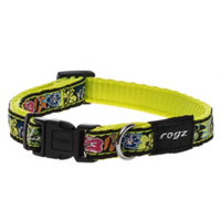 Rogz Fancy Dress Dog Collar - Dayglo Floral
