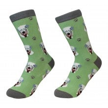 Soft Coated Wheaten Terrier Socks