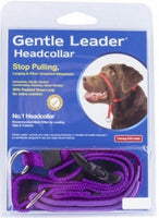 Gentle Leader Headcollar - Purple - Various Sizes