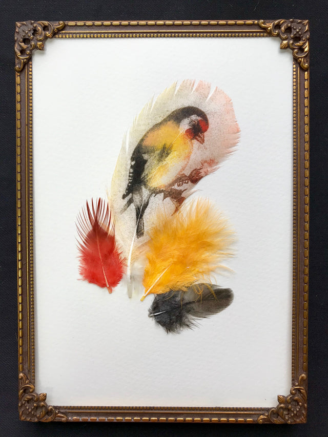 Goldfinch On Silk