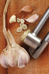 HIC Harold Import Co. 22014 Garlic Press with Removable Insert, 6.25-inches, Stainless Steel