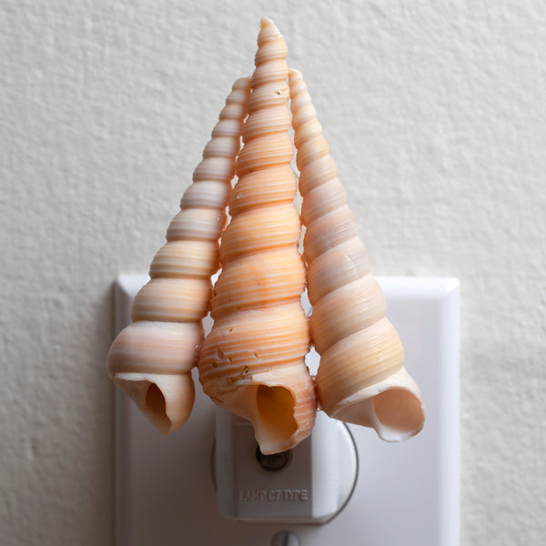 Seashell Night Light - Handcrafted Automatic Sensor Natural Lamp