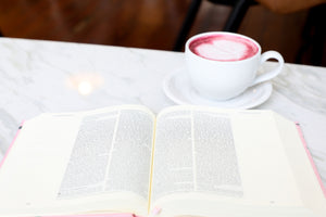 The Holy Bible - Blush, ESV Journaling Bible