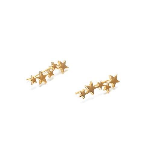 Star Dust Earrings