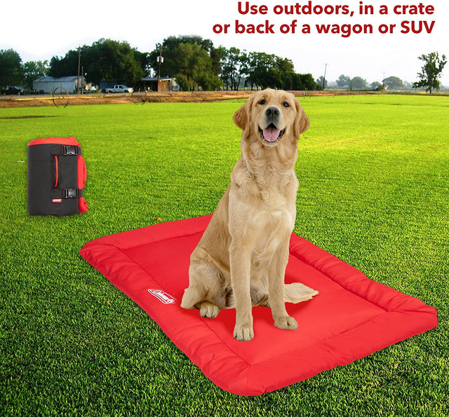 Coleman Roll Up Travel Pet Beds perfect for on the go adventures camping in the vehicle or just about anywhere you and your dog end up
