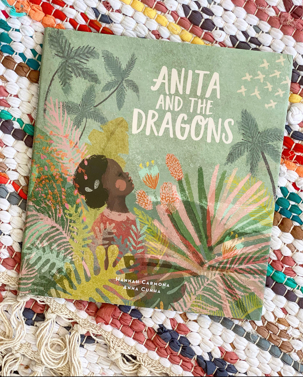 Anita and the Dragons | Hannah Carmona