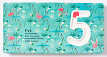 5 Wild Numbers + Shapes Set | Falsini