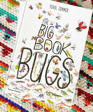 Big Book of Bugs | Yuval Zommer