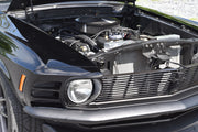 1971 Ford Mustang Mach One