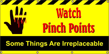 Watch Pinch Points, Some Things Are Irreplaceable - SBS250